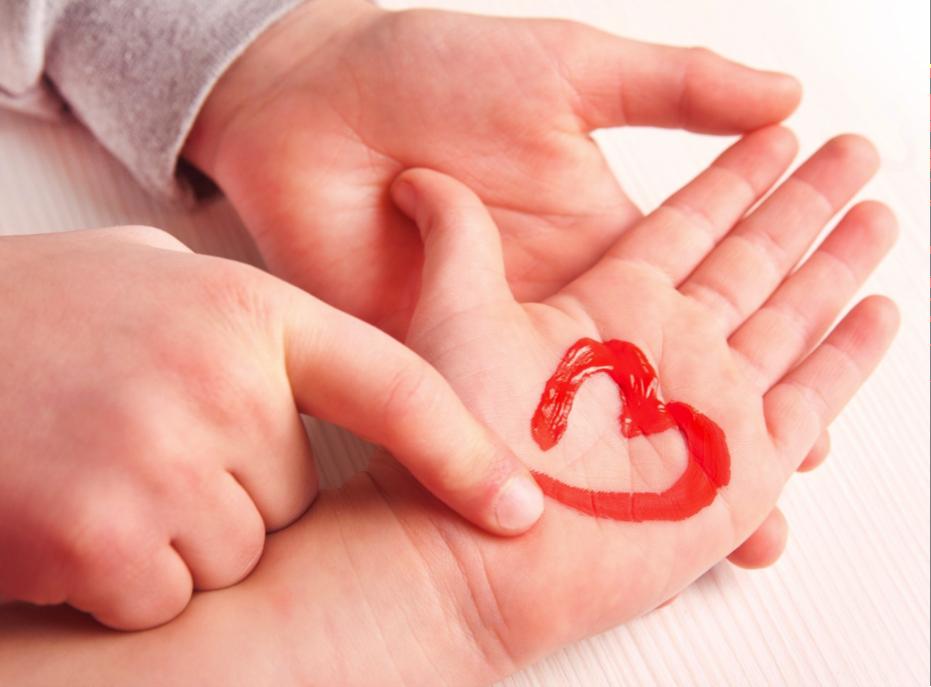 Diferencias entre el corazón de un niño y de un adulto4 (6)