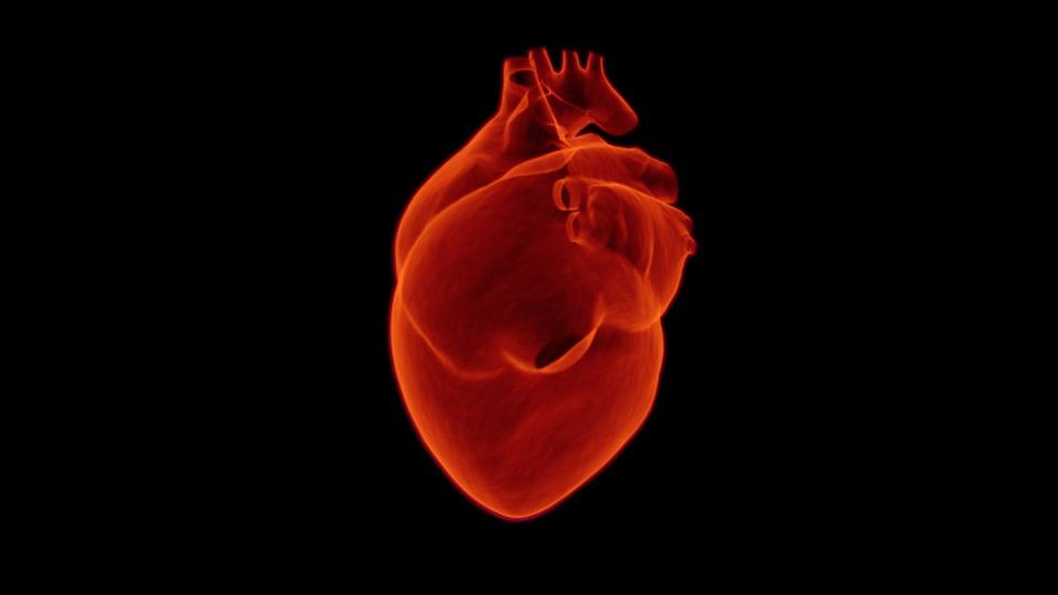 El proceso de un ataque al corazón0 (0)