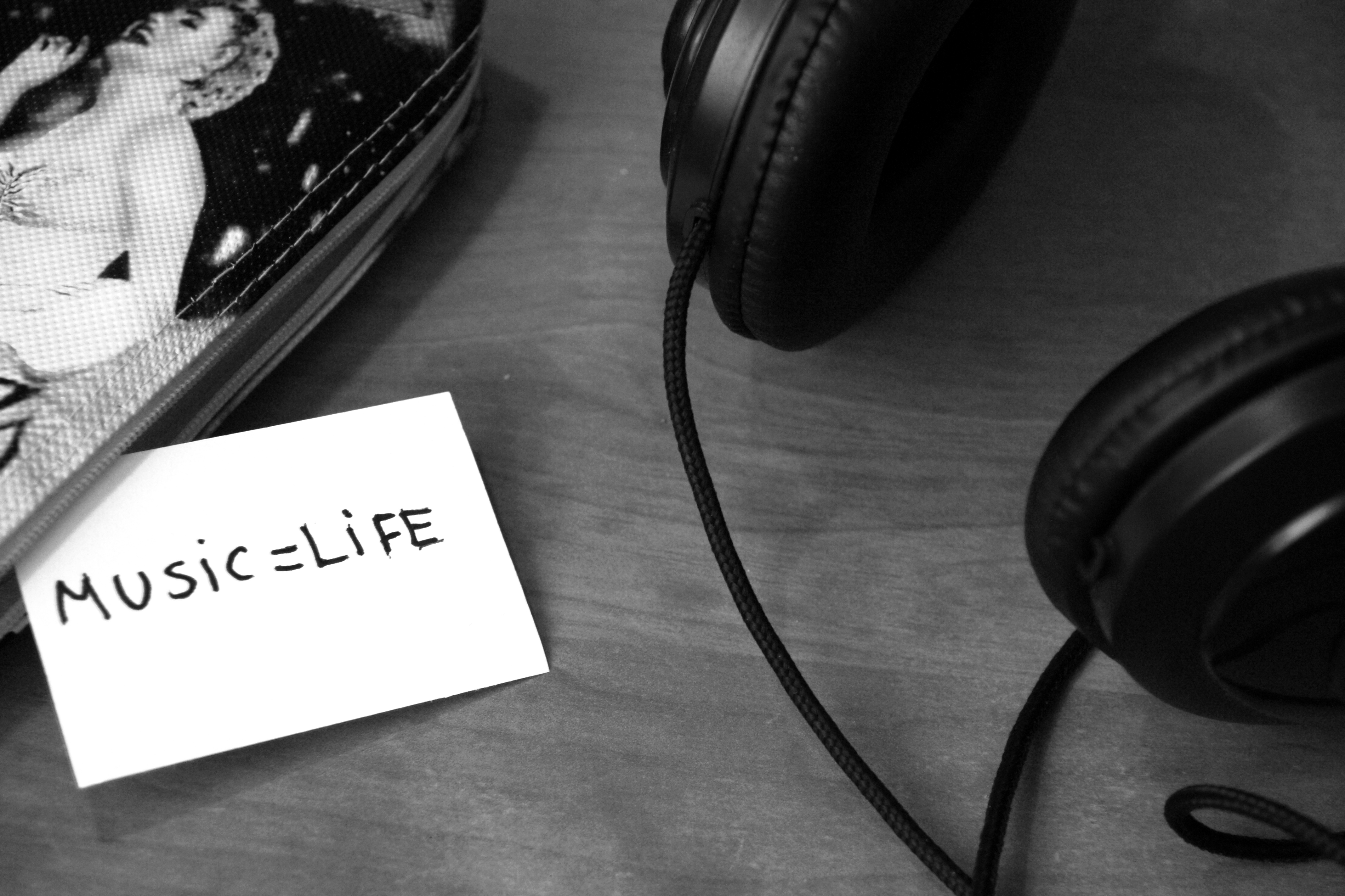 La música que salva vidas en las maniobras RCP0 (0)